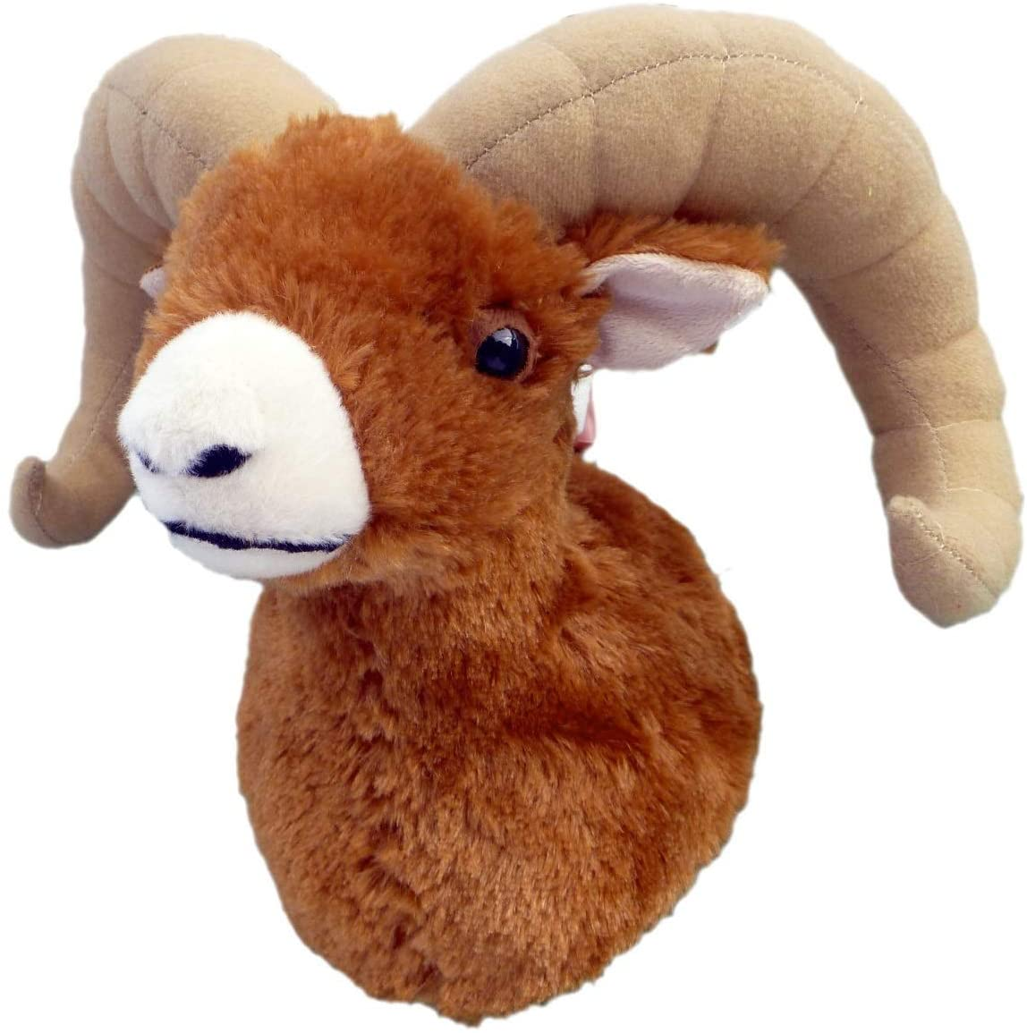 Kid's Bighorn Sheep Wall Mount